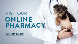 Link to Online Pharmacy